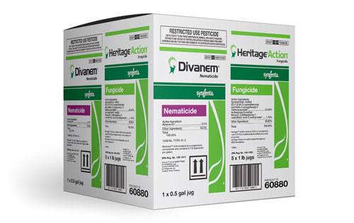 Divanem + Heritage Action Multipak