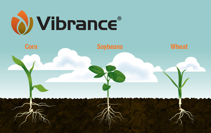 Vibrance - Seed Treatment Product & Label Information | Syngenta US