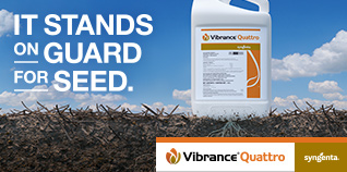 Vibrance Quattro: It stands on guard for seed